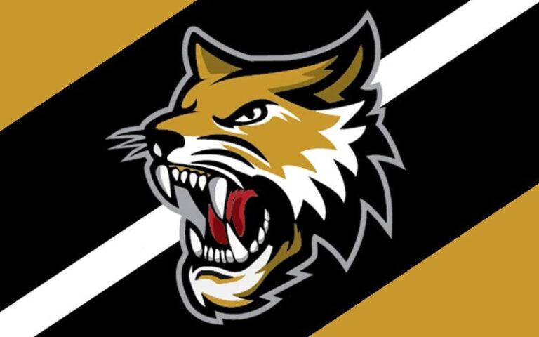 Vermilion County Bobcats Logo